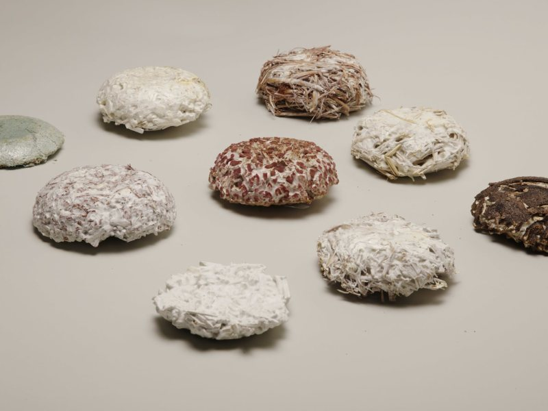 Mykor biocomposite material