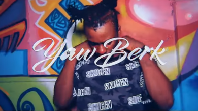 Photo of Yaw Berk – Inna Peace(Freestyle Video)