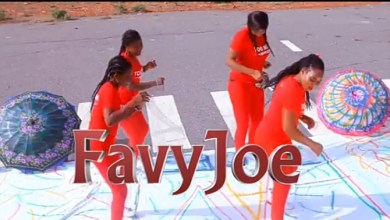 Photo of FavyJoe – Too Much(Official video)