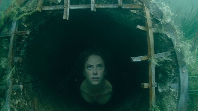 Crawl' Review: Alexandre Aja's Alligator Horror is Precise, Tense, and  Satisfying