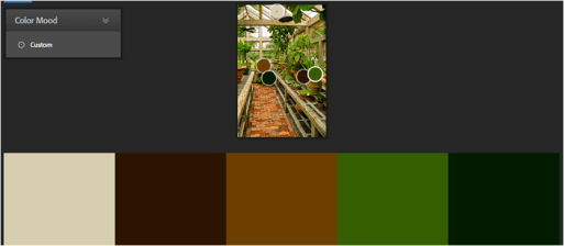 inspired-colour-scheme-for-greenhouse-inside