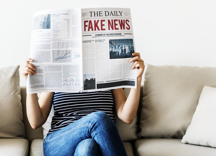 Reading Between the Lines of Financial Fake News