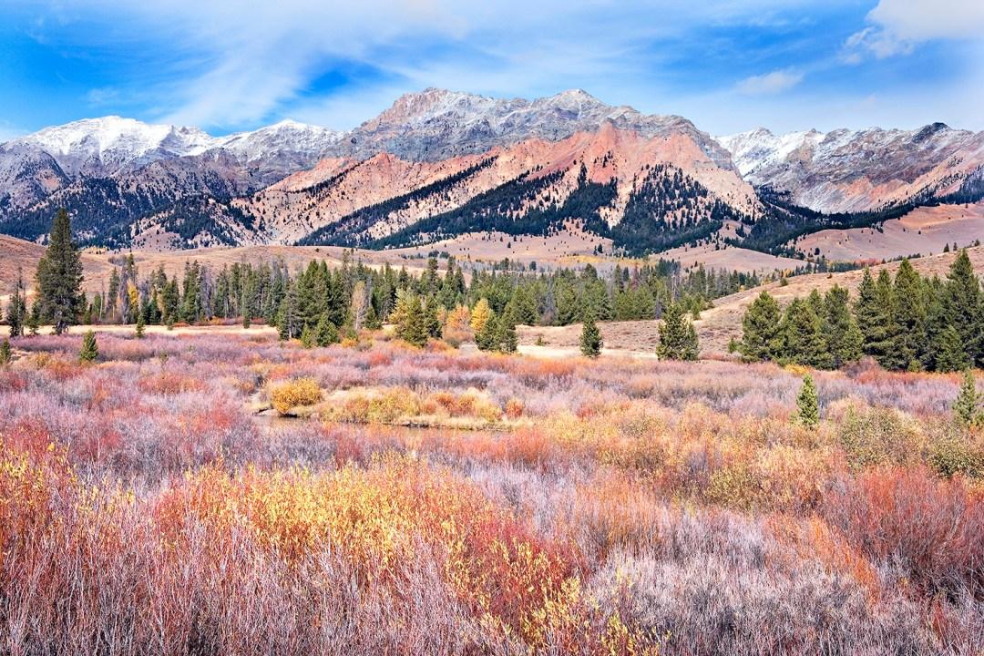 Boulder Mt. Wetland