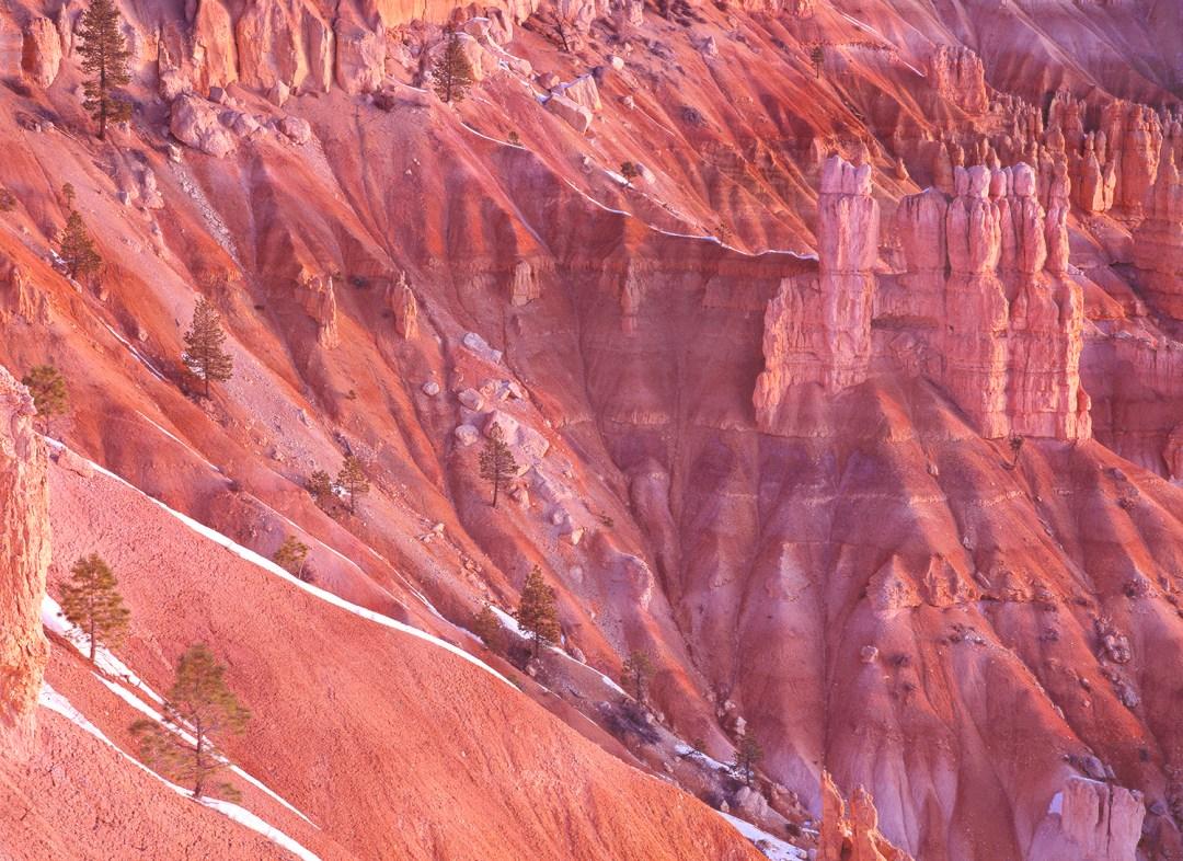 Bryce Canyon Portrait