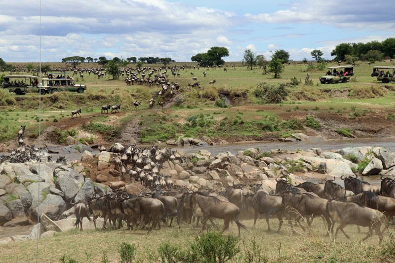 Serengeti, Tanzania, Mara River