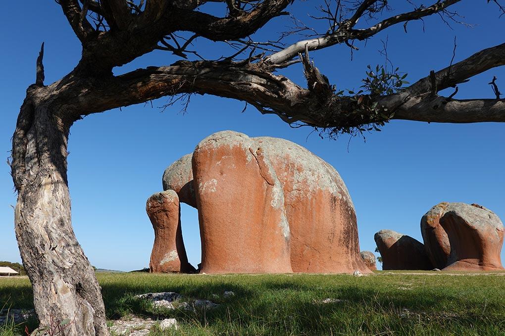 Murphys Haystacks, Eyre Peninsula, South Australia, Australian Coastal Safaris