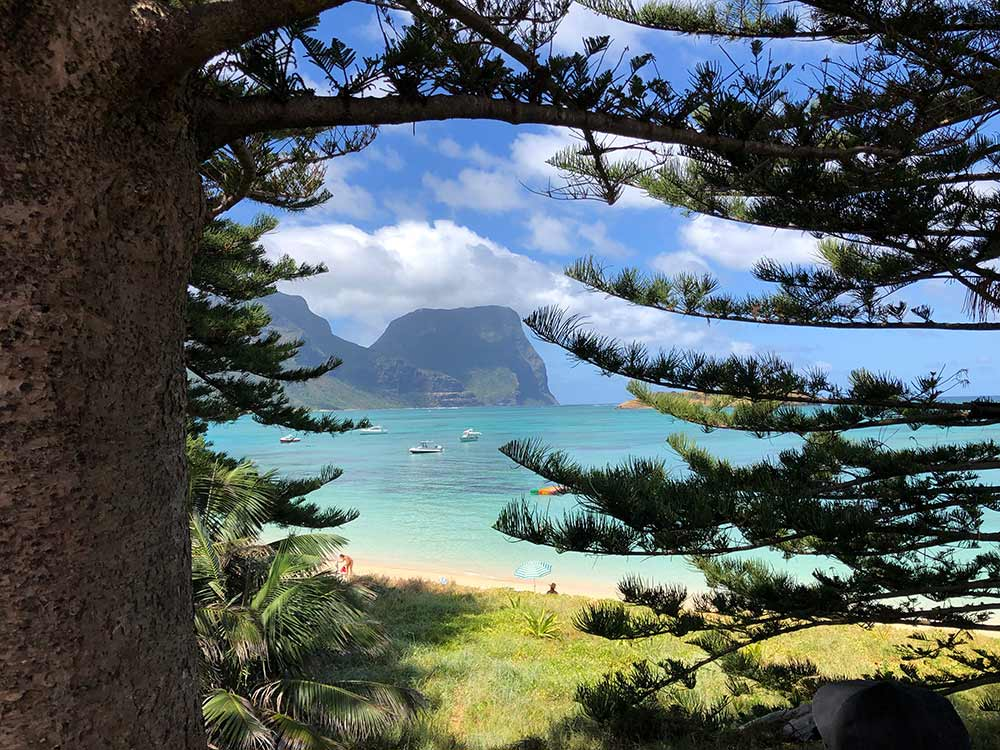 Lord Howe Island, Destination NSW, World Heritage Listed, Pinetrees Lodge