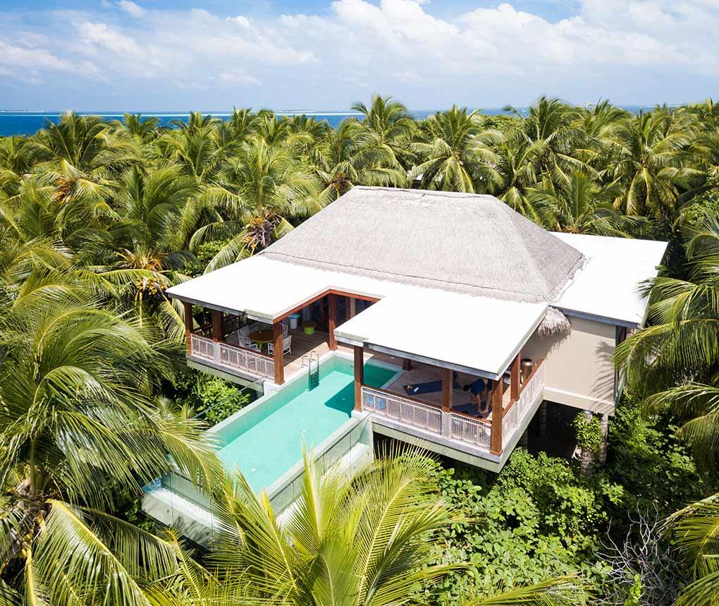 Amilla Fushi, treehouse, luxury treehouse, The Maldives