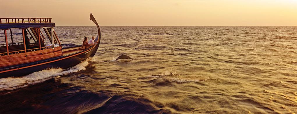 Sunset fishing, The Maldives, Dhoni, dolphins
