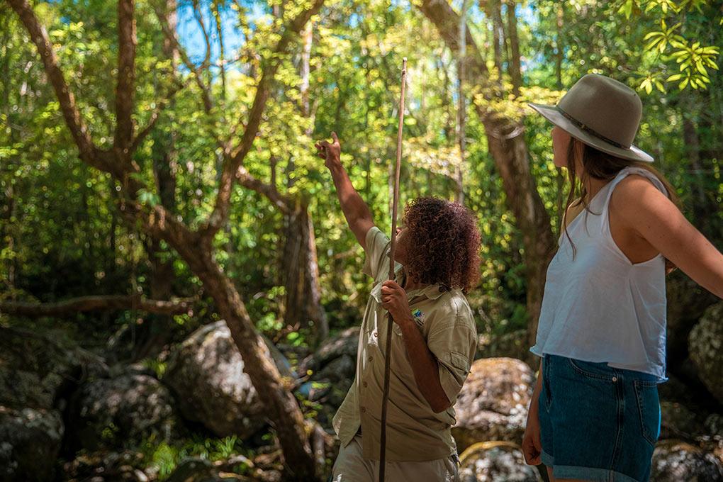 Indigenous tourism, This is Queensland, Tourism Australia, See Australia