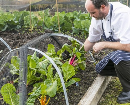 James Honore, New Zealand chef, Cape Kidnappers