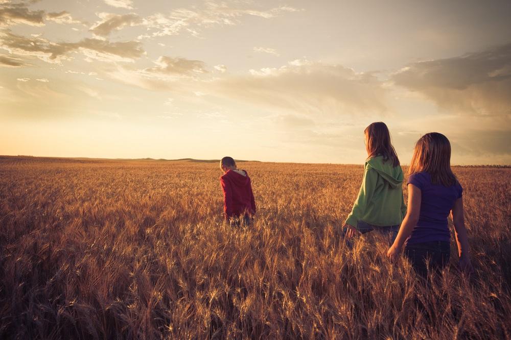 North Dakota, wheatfields, agritourism