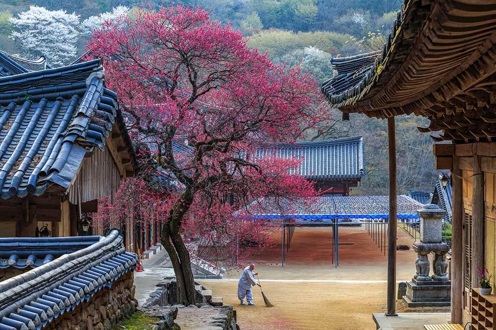 Korea, temples, Hwaeomsa Temple, temples, South Korea