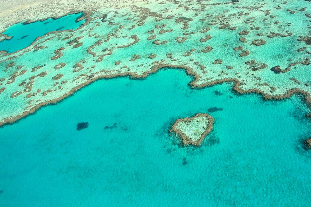 Heart Reef, Whitsundays, Queensland, Great Barrier Reef