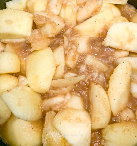 Applesauce Spices Added