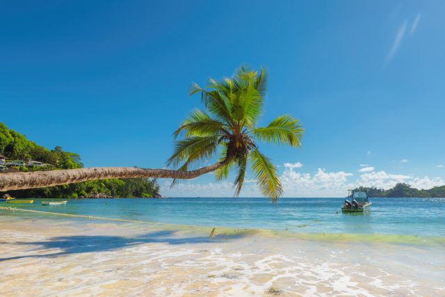 Other countries that are offering nomad visas are Caribbean nations as well as in Europe