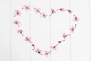 minimalism flatlay photography white inspiration decor interior home love flowershellip