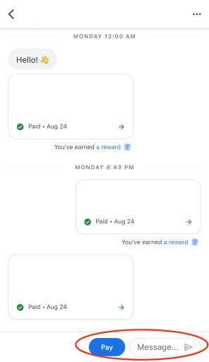 Google Pay Live Chat