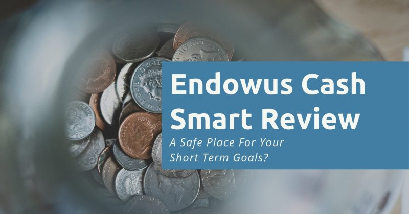 Endowus Cash Smart Review