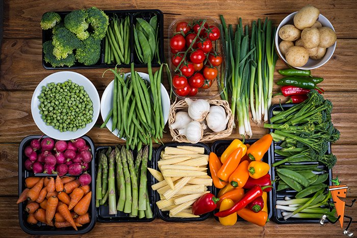 Nutrition and Wellness Programs