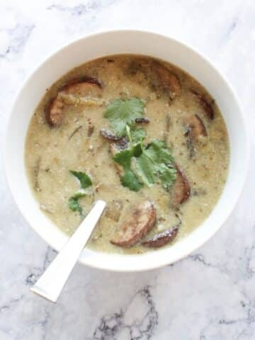 cream of mushroom soup on the 21 day fix diet