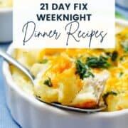 21 day fix dinner recipes