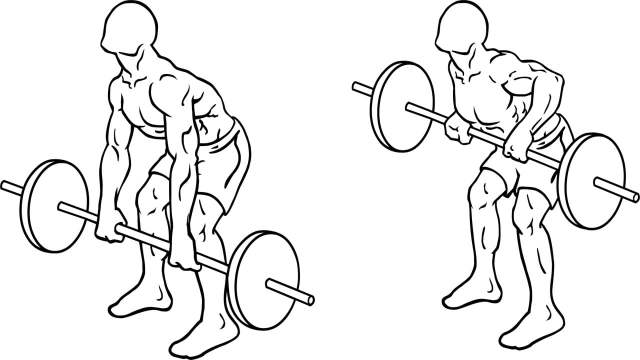 Barbell bent over
