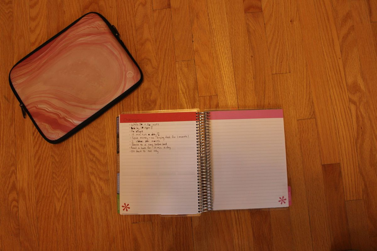 The Private Diary of an Actress in Training | {Self Reflection Journal}