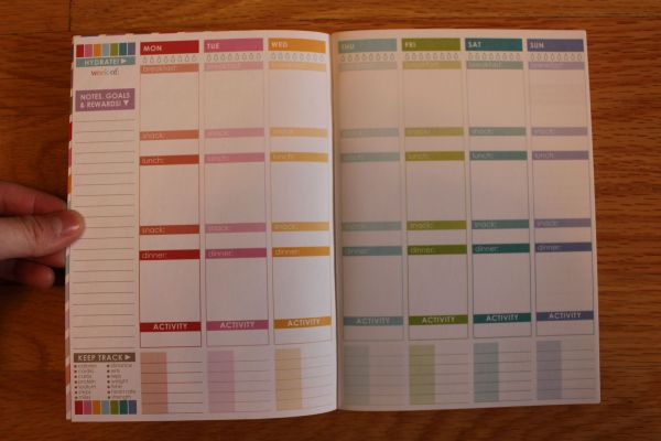 wellness journal erin condren