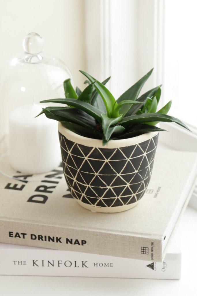 Home Décor Mono Plant Pot