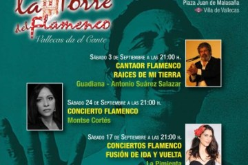 Flamenco festival in Madrid - La Torre del Flamenco