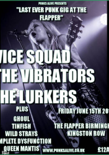 Vice Squad + The Lurkers + The Vibrators + Queen Mantis+ Complete Dysfunction + more