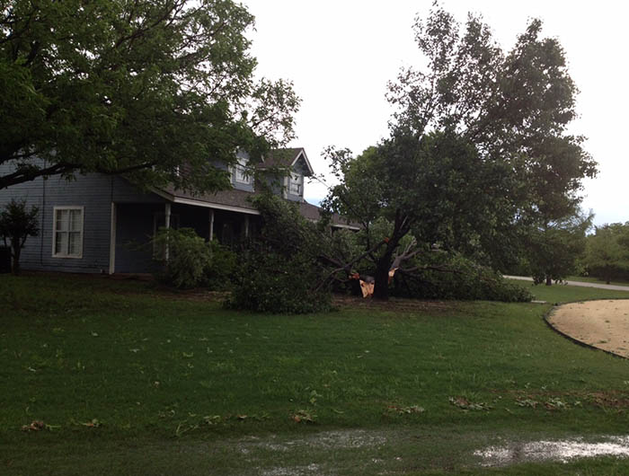The Friday storm downed these trees into the front of a home in Stephenville. || Courtesy JASON VRANES
