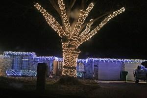 Lights by Rachel 13