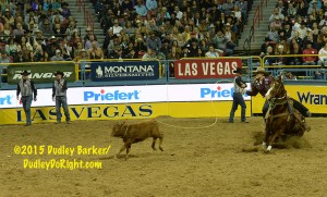 NFR Rd 7 Marty Yates 02