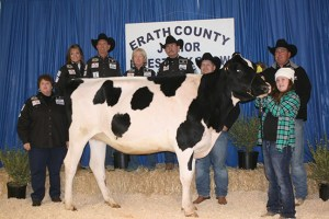 The reserve champioin full aged yearling heifer from the dairy selling division was shown by Makayla Osinga and purchased by Cowboy Capital of the World Pro Rodeo Committee, Tumbleweed BBQ and Comanche National Bank.