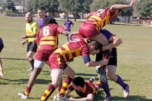 TSU Rugby 2