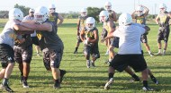 Dublin's Lions, now 90 strong, are looking to roar their way back into the state playoffs for the third consecutive season. || TheFlashToday.com photo by BRAD KEITH