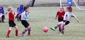 little-league-soccer-10