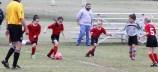 little-league-soccer-4