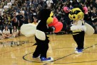 Heart of Gold Pep Rally _3000