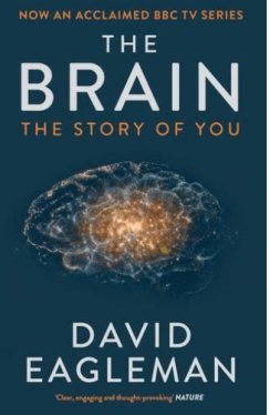 The Brain -The Story Of You - Brain Books