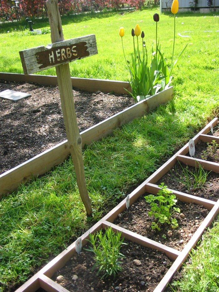 Herbs In Ladder Garden via The Shepherd's House