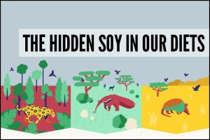 The Hidden Soy In Our Diets