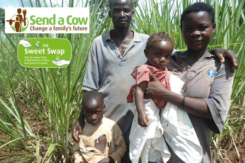 Send A Cow - Sweet Swap