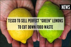 Tesco to Sell Perfect Green Lemons to Cut Down on Food Waste