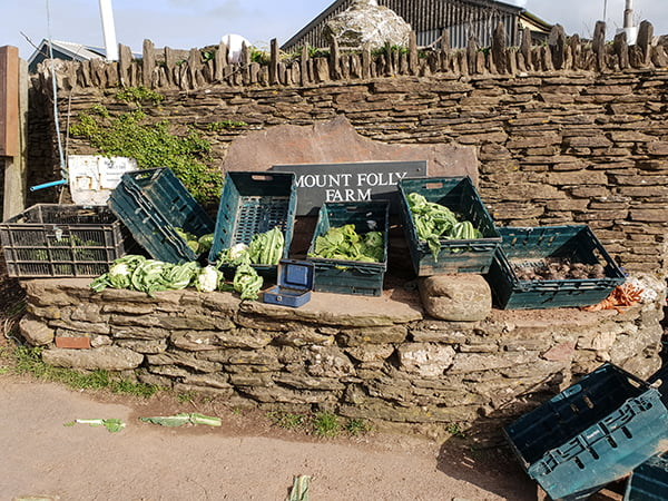 South Devon Mount Folly Farm