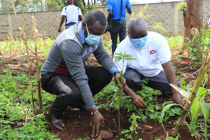 Equity Ngara Branch and Interior Ministry Plant Trees at Mathari National Teaching and Referral Hospital