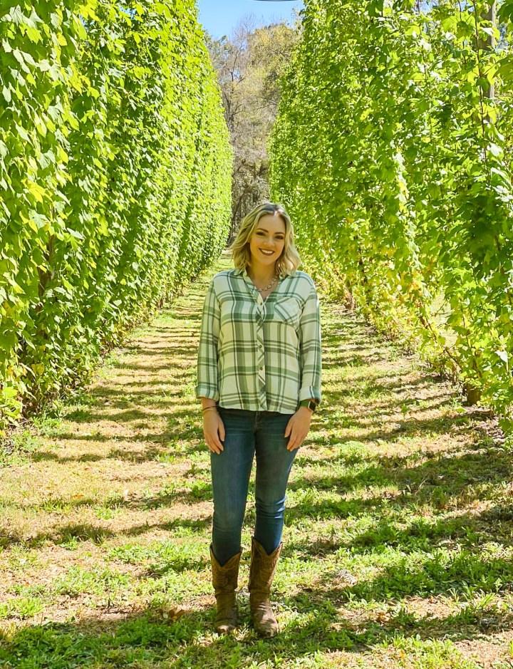 Fox Valley Hopyard Harvest