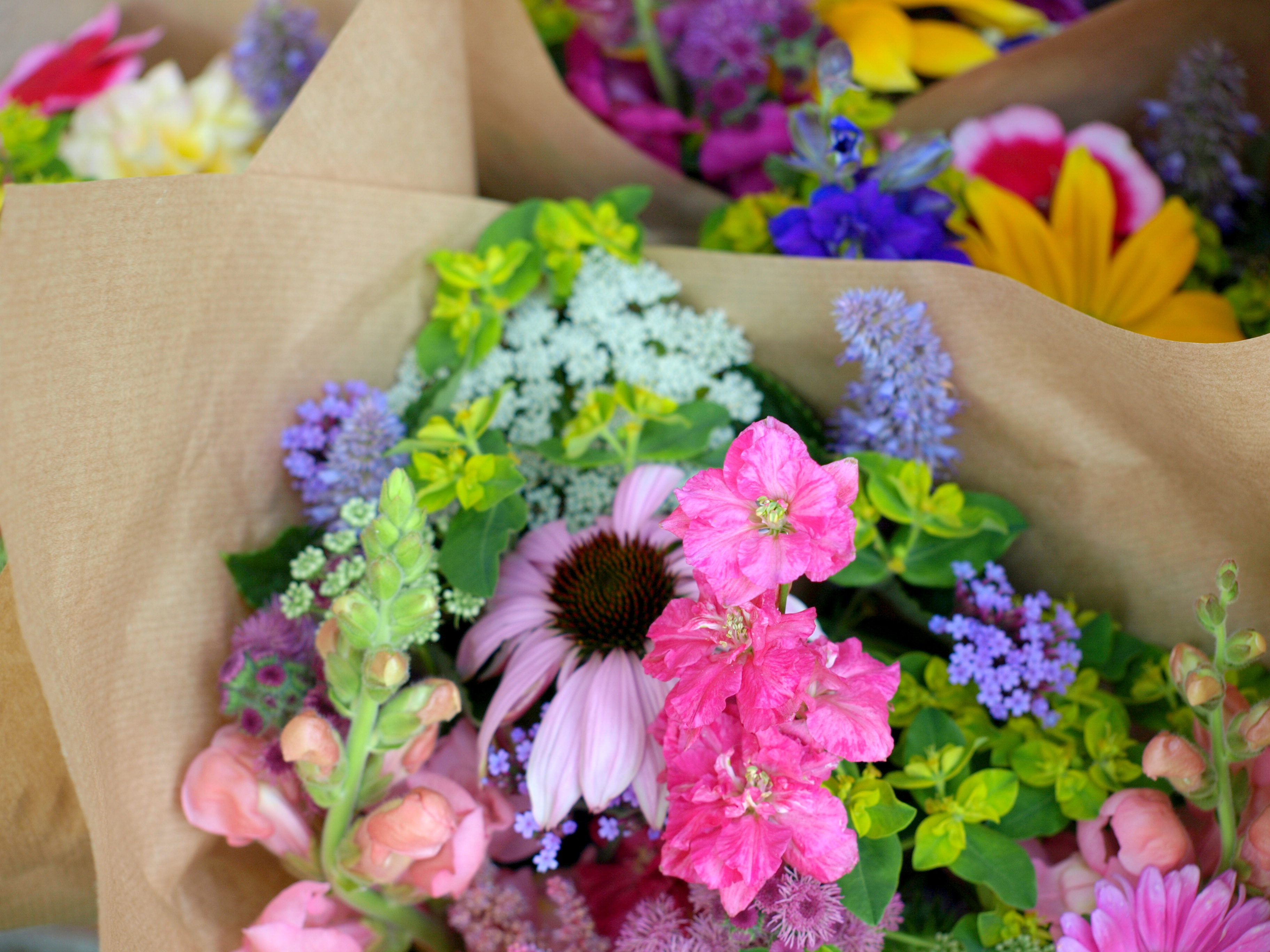 Friday Flowers : Wedding Flowers Lancashire By The Flower Farm